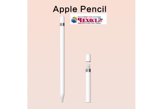 Фирменый оригинальный стержень-наконечник для стилуса Apple Pencil на iPad Pro 9.7 / iPad Pro 12.9